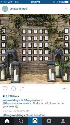 Escort cards Pisa, Wild Flowers, Lanterns, Tower, Building, Travel, Beautiful, Reception, Viajes