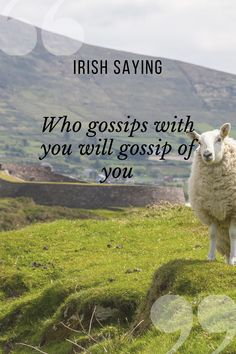 Who gossips with you will gossip of you! *** #ireland #proverbs #sayings #traditions #culture #history #irish #UK Irish Proverbs, Irish Quotes, Cricut Design, Spy, Gossip, Wise Words, Fun Facts, Wisdom, Culture