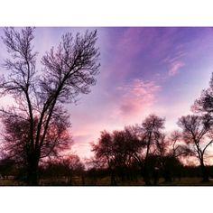 Anochece en #Ávila via @isabelmartinj Videos, Celestial, Sunset, Outdoor, Photos, Sunsets, Outdoors, Outdoor Living, Garden