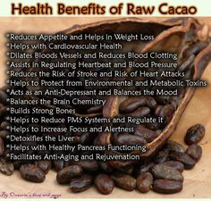 The Split Plate: Do you use Raw Cacao in your baking, raw desserts, breakfasts, or smoothies? Check out the health benefits of organic, raw cacao. Le Cacao, Cacao Nibs, Raw Cacao Powder, Cacao Powder Benefits, Raw Cacao Benefits, Reduce Appetite, Tomato Nutrition, Coconut Health Benefits, Cardiovascular Health