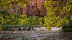 Virgin fiume utah | Virgin River / Parco Nazionale di Zion / Utah / Stati Uniti | HD Stock ...