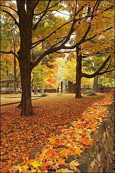 On the lawn of Old Main. Fayetteville - Fayetteville Arkansas - Fayetteville AR