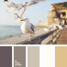The combination of soft, semi-transparent gray and beige and brown with white. Interesting photos of nature would be appropriate even in the most rigorous study. Such an image will fit into any color scheme and can naturally complement different interiors, regardless of the design style of the room.