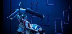 Séquence 8. Dans ce spectacle les arts de la rue et du cirque se mélangent les 8 et 9 février 2013.