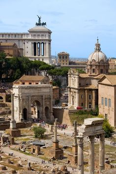 What you can see on your Amazing Roman Holiday: The spectacular Roman Forum.