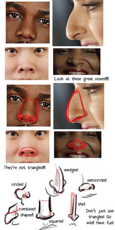 Noses are great guys! Don't limit yourself in exploration of the nose!!!
