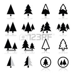 tree silhouette : Pine tree