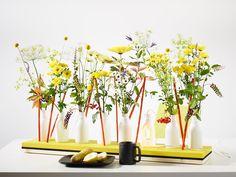 Blüten-Tanz   Warum sollte man sich von diesen Buttermilch-Fläschen trennen, wenn sie sich mit wenigen Handgriffen in ein originelles Blütenset verwandeln lassen? Die Kombination aus Blüten und recyceltem Kunststoff ist ein Hingucker auf jedem Frühstückstisch. Die Chrysantheme Anastasia Sunny setzt leuchtende Akzente.