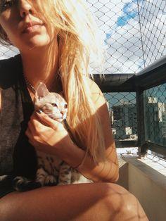 Cat gato bengal whit