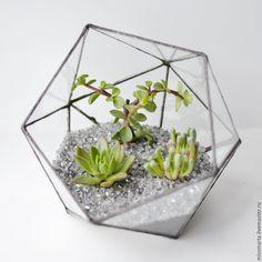 Купить или заказать Геометрический флорариум