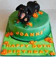 Dachshund made of krispies and chocolate cake