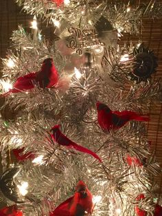 255 best Christmas Cardinals images on Pinterest in 2018   Christmas ...