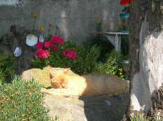 sous le soleil breton, du côté de saint cado