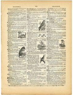5 Printable Vintage Dictionary Pages! - - 5 Printable Vintage Dictionary Pages! Mixed Media/Art Journaling Printable Vintage Ephemera Dictionary Page Picture Vintage Ephemera, Éphémères Vintage, Papel Vintage, Images Vintage, Vintage Labels, Vintage Prints, Printable Vintage, Vintage Paper Crafts, Vintage Logos