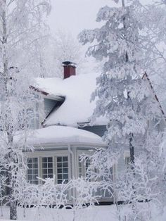 Winter splendor- I'm missing the snow right now! Please, snow, come! Winter Szenen, Winter Love, Winter Magic, Winter White, Hirsch Illustration, Beautiful World, Beautiful Places, Beautiful Scenery, I Love Snow
