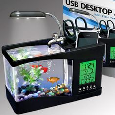 $29.71 USB Desktop Aquarium | Cool People ShopUSB Desktop Aquarium is a great home for small fish with adjustable overhead light, USB power connector, decorative rocks & low voltage pump.  Water recirculates providing oxygen for your fish while color changing LEDs provide a captivating display. The multi-function alarm clock and desk caddy make this unique aquarium practical and fun. Anyone can put a pencil holder on a desk