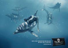 La Sea Shepherd Conservation Society est une ONG maritime fondée en 1977 par Paul Watson, écologiste canadien, dédiée à la protection des océans. Voici cette nouvelle campagne de communication avec des visuels impactants réalisés par Viken Guzel et Jean-Christophe Royer.