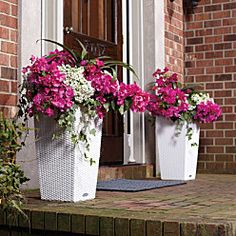 Improvements catalog, self-watering planters - built-in sub-irrigation system for watering several days or even weeks.  woven wicker-look surface -