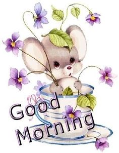 In today's post, we are presenting good morning msg. If you are searching for good morning msg you are welcome to our website. Cute Good Morning Quotes, Good Morning Picture, Good Morning Flowers, Good Morning Messages, Good Morning Greetings, Good Morning Good Night, Morning Pictures, Good Morning Wishes, Good Morning Images
