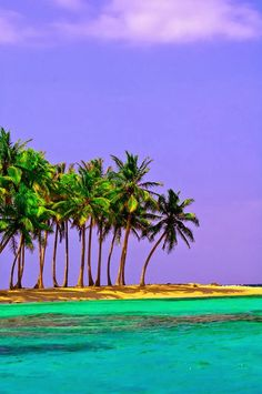✯ Pelican Island - San Blas Islands, Panama