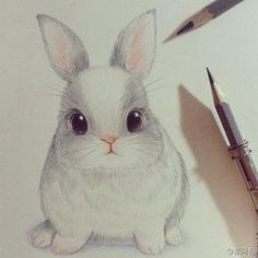 Картинка с тегом «drawing, cute, and rabbit»