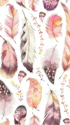 Pretty Feather Background - All About Women