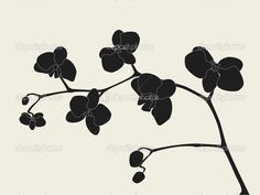 orchid silhouette - Google Search