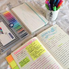 Studies in a Onesie