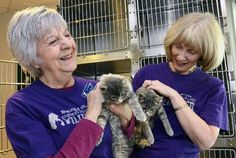 Longmont Humane Society volunteers logged two weeks caring for cats during the floods