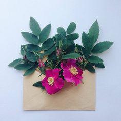Flowers Bouquets in Vintage Envelopes – Fubiz Media
