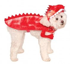 Rubies Costume Company Squirrel Pet Costume, Small >>> Visit the image link more details.
