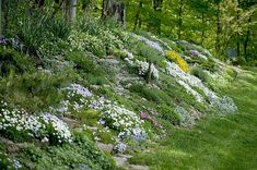 Steeply sloped areas don't have to be 'trouble spots.' Hillsides can be turned into gorgeous rock gardens. Here are some tips. #RockGarden