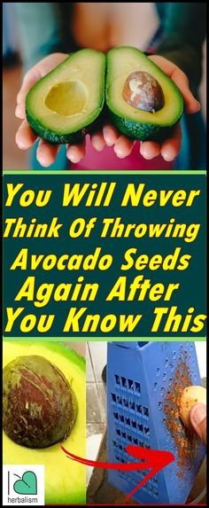 Health You Will Never Think Of Throwing Avocado Seeds Again After you know This - What are the health benefits of eating avocado seeds? We know avocados are loaded with folate, vitamin B, and healthy fats. But avocado seeds are nutrient. Benefits Of Eating Avocado, Avocado Health Benefits, Health And Wellness, Health Tips, Health Fitness, Wellness Tips, News Health, Health Foods, Women's Health