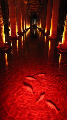 The Basilica Cistern, or Sunken Palace, is the largest of several hundred ancient cisterns that lie beneath the city of Istanbul. It was also a location for the James Bond film, 'From Russia With Love.'