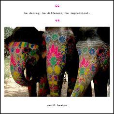 hehe i love elefantes. Funny Elephant, Elephant Love, Elephant Art, Elephant Tattoos, Happy Elephant, Elephant Pattern, Beautiful Creatures, Animals Beautiful, Beautiful Things