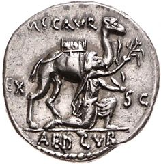 Denario - argento - Roma (58 a.C.) - Dromedario vs.dx. e il re nabateo Aretas che offre il ramo di ulivo - Münzkabinett  Berlin Pirate Coins, Berlin Museum, Coin Art, Rare Stamps, Gold Money, Antique Coins, Coin Collecting, Ancient Art, Silver Coins