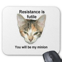 Conquest Kitty Mousepad!  #Zazzle #Store #Cute #Cat #Kitten #Gift #Present #Customize http://www.zazzle.com/conquestkitty*