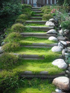 Hillside Landscaping, Front Yard Landscaping, Landscape Stairs, Landscape Design, Steep Gardens, Outdoor Steps, Garden Stairs, Covered Garden, Sloped Garden