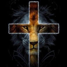 God's love comes roaring in like a lion.