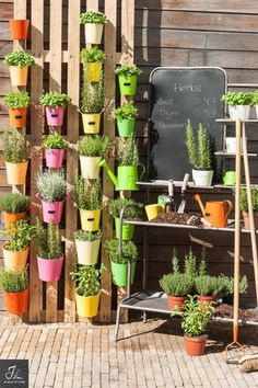 Your own vertical garden These J-line Tips & Tricks will help you to create a picturesque vertical garden for your herbs and/or. Terrace Garden, Herb Garden, Garden Plants, Home And Garden, Vertical Garden Wall, Vertical Planter, Types Of Herbs, Variety Of Fruits, Happy House
