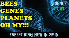 Science FTW! Bee's, Genes, & Planets Oh My!! Everything New In 2 Min Ep 1