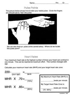 Worksheet demonstrating how to find a pulse and another calculation to determine heart rate. Physical Education Activities, Health And Physical Education, Health Class, Gifted Education, Fitness Activities, Science Activities, Waldorf Education, Group Activities, Special Education