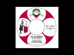 """Sharon Jones & the Dap-Kings - """"Ain't No Chimneys In The Projects"""" (Song Stream)"""