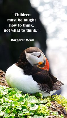 """Children must be taught how to think, not what to think."" Margaret Mead"