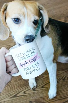 """I just want to take naps, drink coffee, and save animals!"" That's SO true! My dog, Lilly, is my whole world and she and and love to cuddle up and nap together. I wish I could spend my whole day napping and sipping coffee with her! This is the perfect gift for any animal lover! And by purchasing this mug...you will be helping to save animals! For every mug purchased, $2 will be donated to animal rights groups around the globe. (Click here to purchase your own - $17)"
