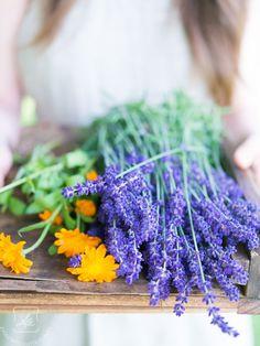 Diy Beauty, Beauty Hacks, Natural Cosmetics, Health And Beauty, Soap, Herbs, Plants, Nature, Beautiful