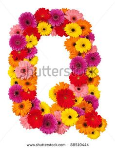 stock photo : Letter Q - flower alphabet isolated on white background
