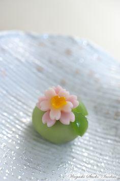 wagashi #wagashi #japan - traditional Japanese sweet Japanese Wagashi, Japanese Cake, Japanese Sweets, Japanese Food, Traditional Japanese, Eclairs, Desserts Japonais, Japanese Pastries, Food Decoration
