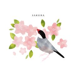 桜文鳥と桜 | デザインTシャツ通販 T-SHIRTS TRINITY(Tシャツトリニティ)