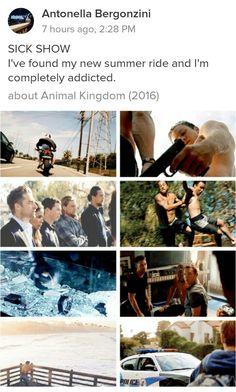 Animal Kingdom (TNT)